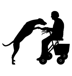Old woman with dog vector