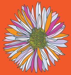 Orange camomile print vector