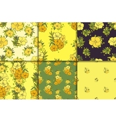 Six seamless floral patterns vector