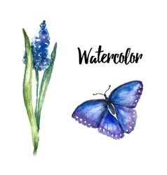 Watercolor flowers lupine vector
