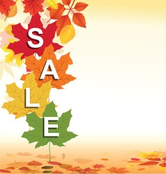 Autumn retail background vector