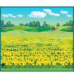 Beautiful country landscape with tulips vector