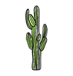 Green saguaro cactus hand drawn icon vector