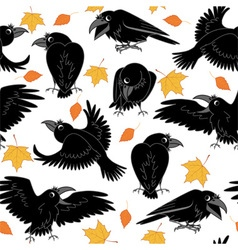 Ravens vector image vector image