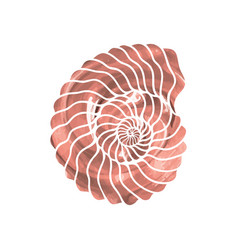 Graphic circle seashell vector