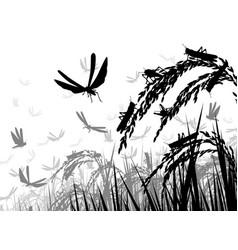 Locusts on rice vector