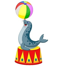 Cartoon circus seal playing a ball vector