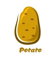 Cartoon brown organic potato vegetable vector