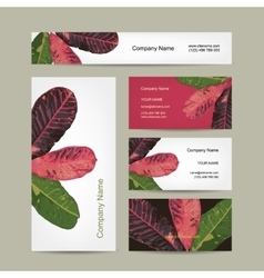 Business cards design botanical theme vector
