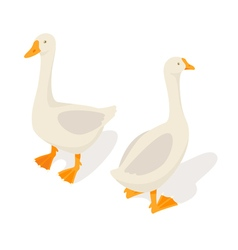 Isometric 3d of farm goose vector