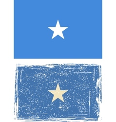 Somali grunge flag vector image vector image