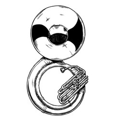 sousaphone vector image