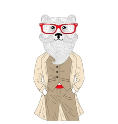 Brutal bear in elegant classic suit with coat hand vector