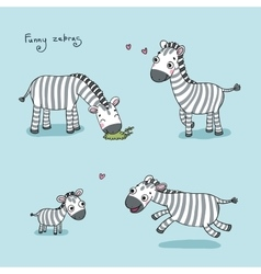 Funny cartoon zebras vector