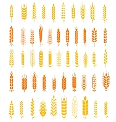 Wheat Ears Icons and Logo Set Natural Product vector image