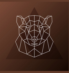 abstract polygonal head of a brown bear vector image vector image