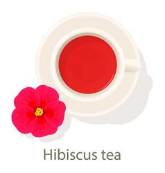 Hibiscus tea icon cartoon style vector