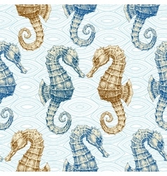 Sea horse seamless pattern Marine life print vector image