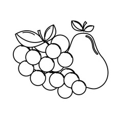 Silhouette grape and pear fruits icon vector