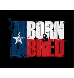 Texan flag born n bred vector
