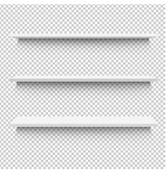 white shelf vector image vector image