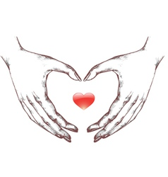 Woman hands with icon heart vector
