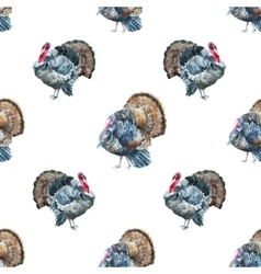 Turkey pattern vector