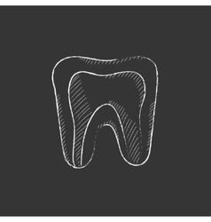 Molar tooth drawn in chalk icon vector