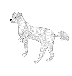 Chinese crested dog coloring for adults vector