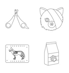 Scissors cat bandage wounded vet clinic set vector