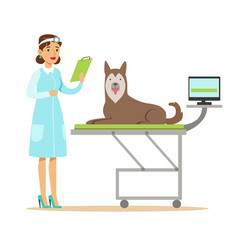 smiling female veterinarian examining dog in vet vector image vector image