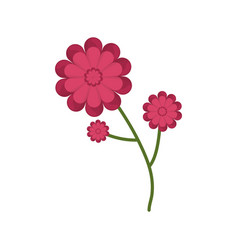 gerbera flower branch spring icon vector image