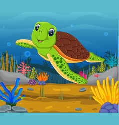 cartoon turtle underwater vector image vector image