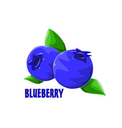 Logo icon design blueberry farm vector