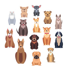 Cartoon dog breeds isolated set vector