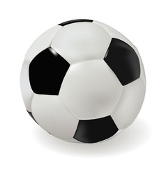 classik soccer ball vector image vector image