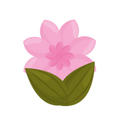 Pink flower garden bud with leaves vector