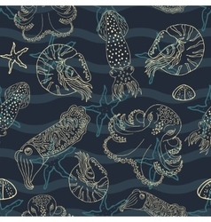 Hand drawn cephalopods seamless pattern vector