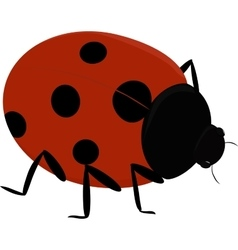 a cute insect - Ladybug vector image vector image