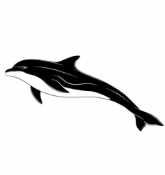 dolphin tattoo vector image vector image