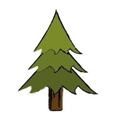 Drawing pine tree forest camping icon vector