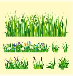 Green grass nature design elements vector