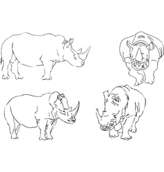 illustration sketch of rhino vector image
