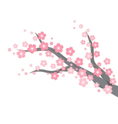 Cherry blossom branch background vector