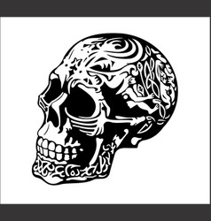 cool skull vector image