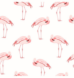 pink flamingo bird standing seamless pattern vector image