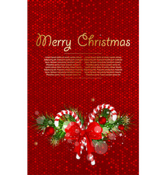 christmas background with fir branches and candy vector image vector image