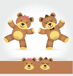 couple teddy bear on white background vector image vector image