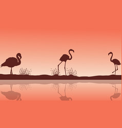 Lake scenery and flamingo silhouettes vector
