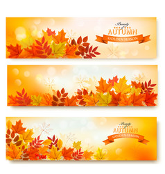 Three abstract autumn banners with colorful leaves vector